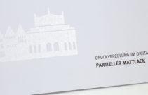 612-Partieller Mattlack-1286--1